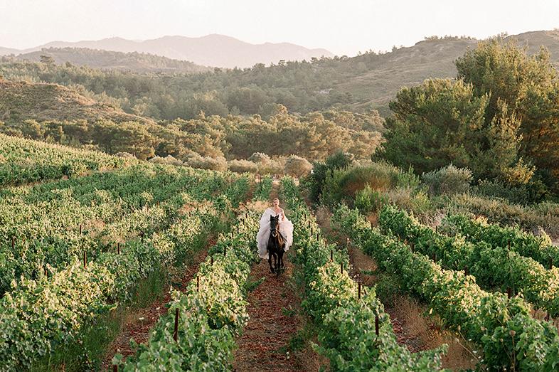 SOFIA-PETRIDENA-WEDDING-RHODES-GREECE-VINEYARDS-65